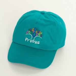Probus cap (683x1024)