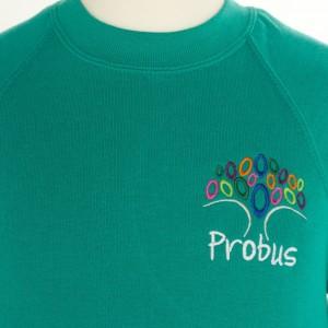 probus sweatshirt front view (903x1024)